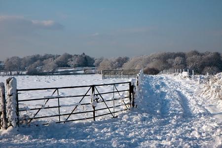 Winter scene in East Grinstead photo
