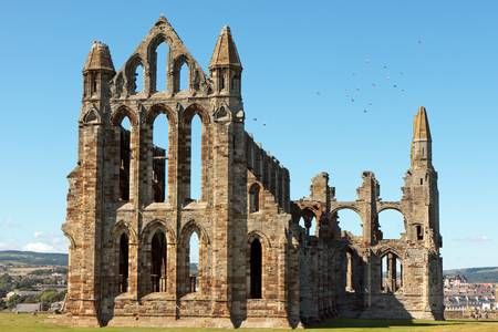 whitby: Whitby Abbey