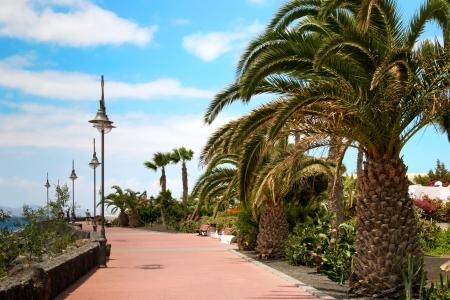 Promenade at Puerto del Carmen Lanzarote Stock Photo - 8404853