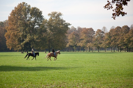 monza: Horse riding in Parco di Monza Italy Stock Photo