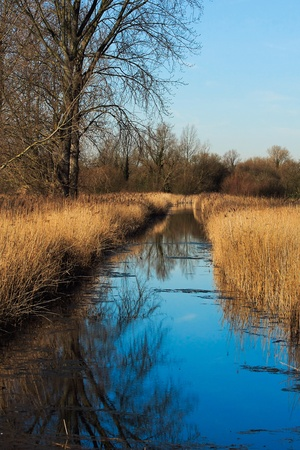 cambridgeshire: Fowlmere Nature Reserve Stock Photo