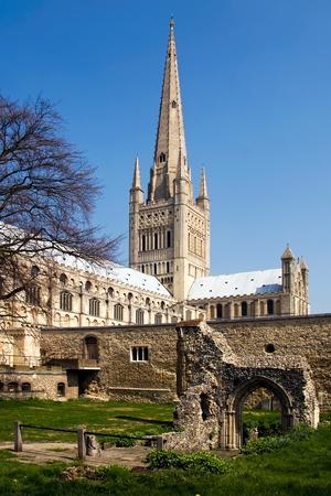 Norwich Cathedral 免版税图像