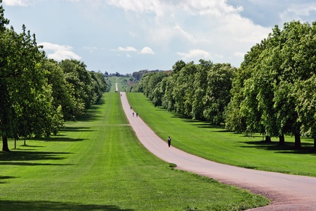 The Long Walk at Windsor Great Park Stock Photo - 8474931