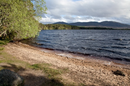 garten: Loch Garten Stock Photo