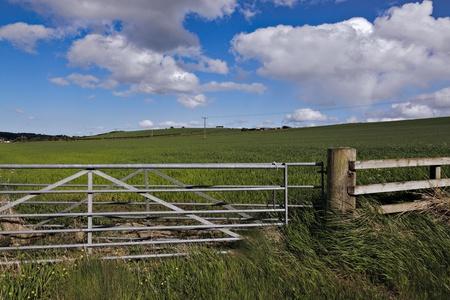 Arable farming near Munlochy Bay photo