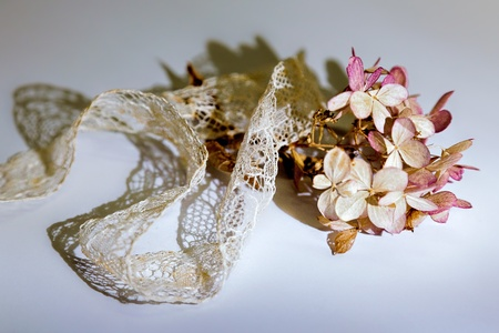 Dried Hydrangea floret and lace ribbon photo