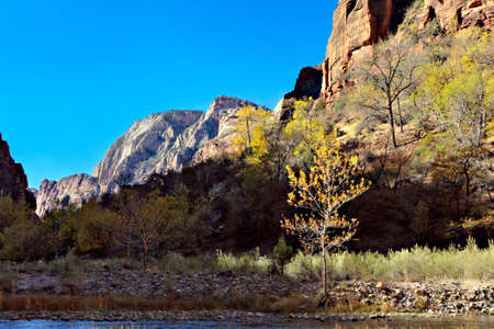 Sun and shadow in Zion photo