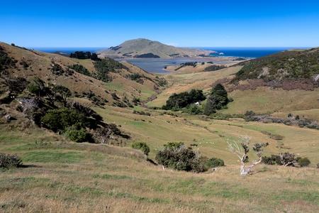 Otago Peninsula Foto de archivo - 12790931