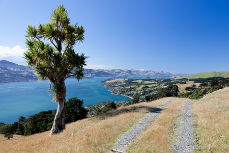 La Pen�nsula de Otago photo