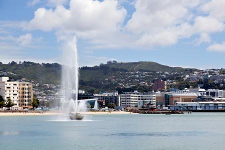 new zealand beach: Waterfront Wellington New Zealand