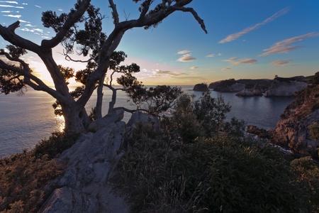 Te: Sunrise at Te Pare Point
