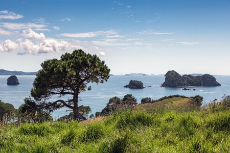 Cathedral Cove photo