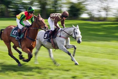 caballo corriendo: Punto a punto correr en Godstone Surrey caballo Editorial