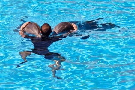 grampus: Dolphin show at Loro Parque