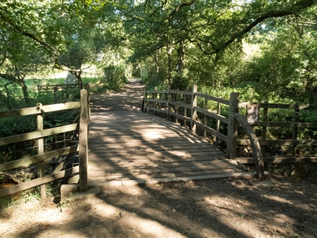 weald: Winnie the Pooh bridge in Ashdown Forest Stock Photo