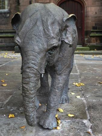 Janya elephant sculpture in Chester Stock Photo - 15839491
