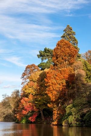 Sheffield Park Garden in autumn photo