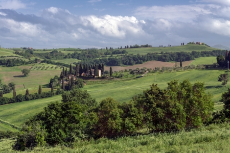 val: Countryside of Val d Orcia