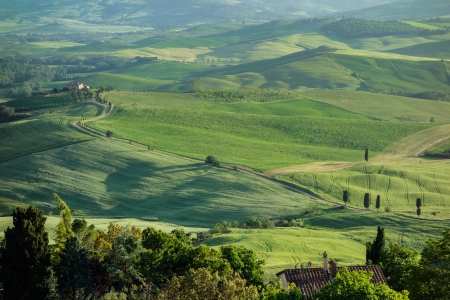 Countryside of Val d Orcia photo