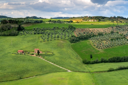 Counrtside of Val d Orcia photo