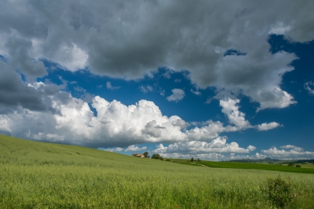 val d      orcia: Farmland in Val d Orcia