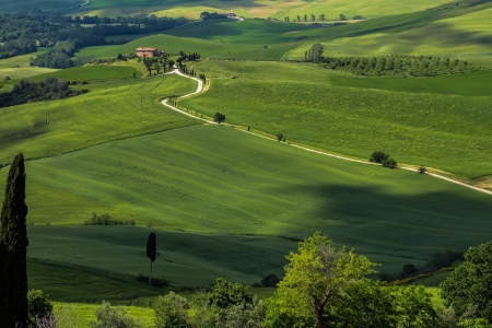 val d orcia: Countryside of Val d Orcia