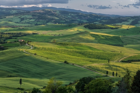 val d orcia: Rolling hills of Val d Orcia