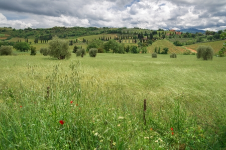 View of the scenic Tuscan countryside photo