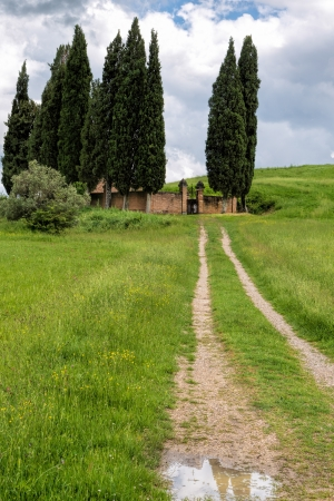 val d orcia: Rural cementery in Val d Orcia Stock Photo