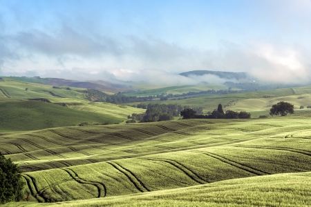 val d orcia: Rolling hills of Val d Orcia Tuscany