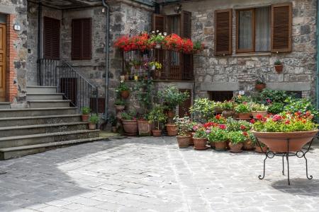moltitudine: Moltitudine di fiori in mostra al di fuori di una casa a Radicofani