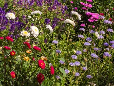 kent: English Garden