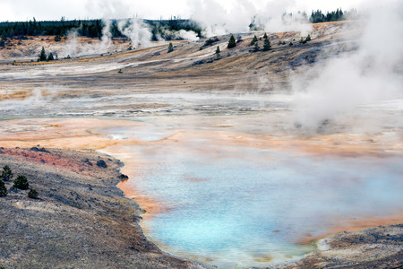 Norris Geyser Basin photo