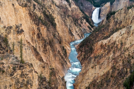 lower yellowstone falls: Lower Yellowstone Falls