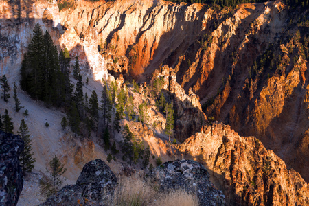 Grand Canyon of Yellowstone photo