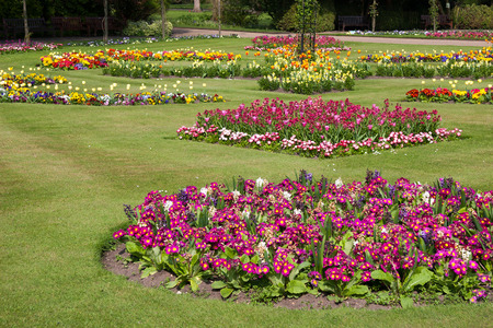 Flowers in the gardens near Bury St Edmunds Cathedral photo