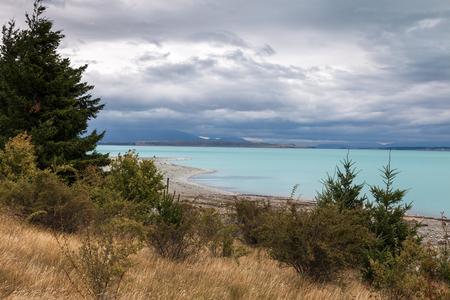 shoreline: Costa desierta