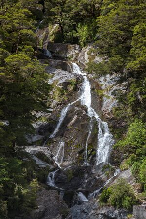 fantail: Fantail Falls