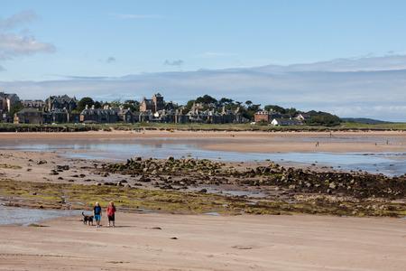 lothian: People walking the dog on North Berwick beach Stock Photo