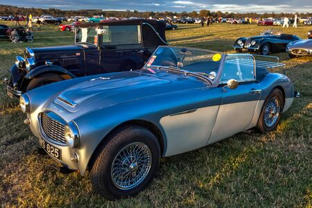Old Austin Healey sports car parked at Goodwood