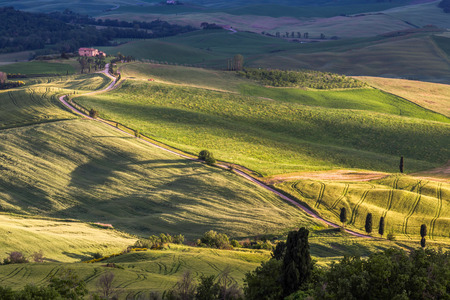 orcia: Countryside of Val dOrcia Tuscany