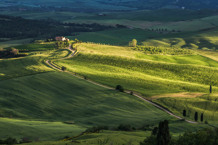 val d'orcia: Countryside of Val dOrcia Tuscany
