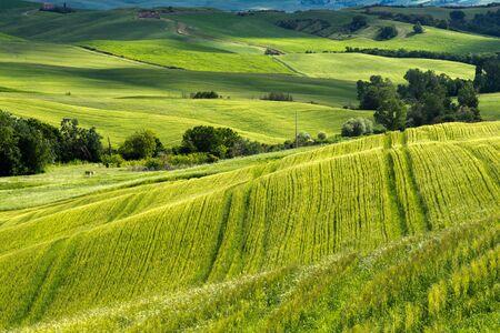 orcia: Farmland in Val dOrcia Tuscany