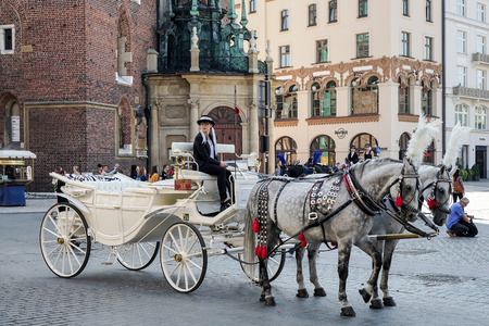 greys: Carriage and horses in Krakow