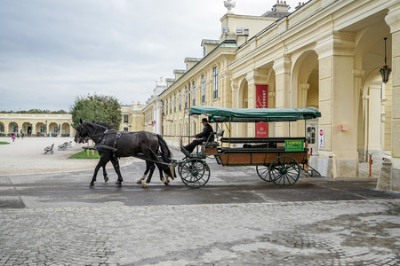 schonbrunn palace: Horse and carriage at the Schonbrunn Palace in Vienna