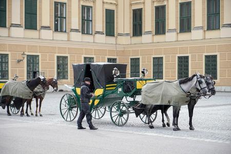 schloss schonbrunn: Horse and carriage at the Schonbrunn Palace in Vienna