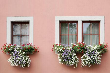 flower baskets: Beautiful flower baskets beneath windows in Rothenburg Stock Photo