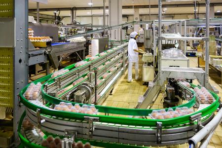이탈리아 베르가 모 근처 계란 가공 공장