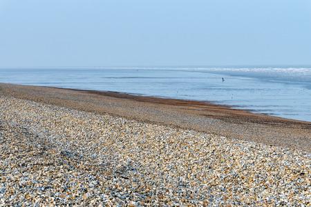 desolate: Windswept desolate beach at Dungeness