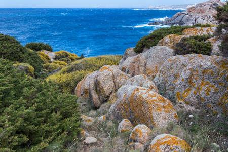 capo: The coastline at Capo Testa Sardinia
